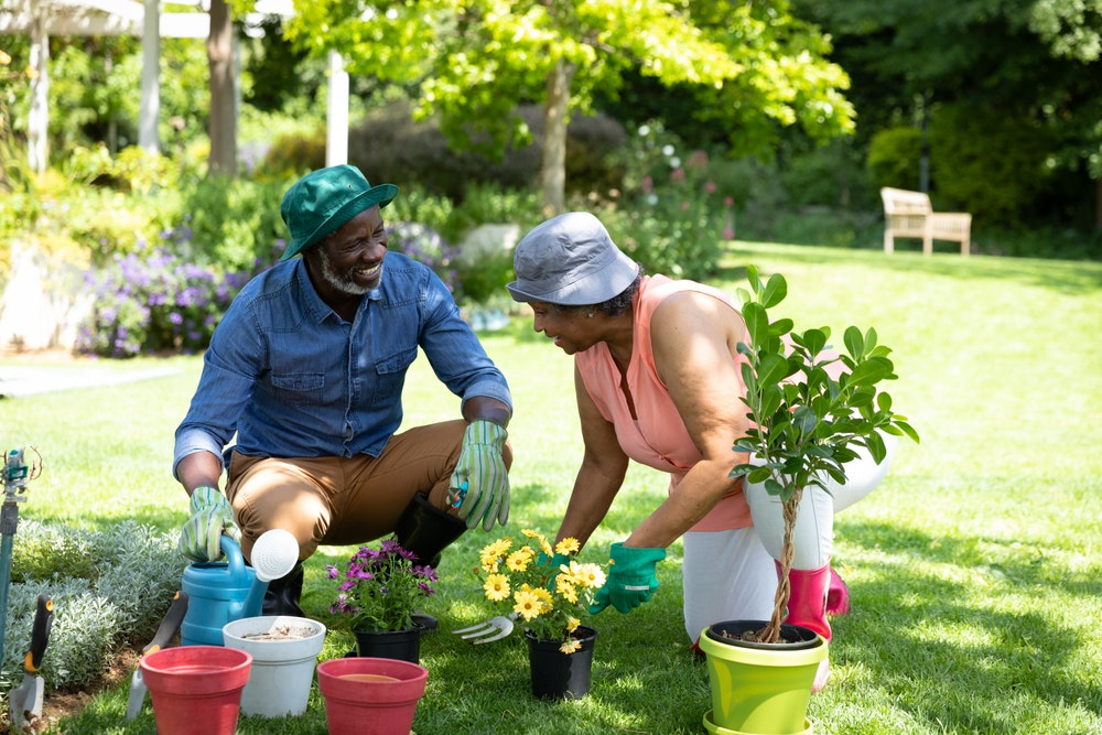 A couple gardening together